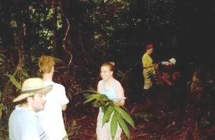 students in the rainforest