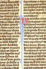 Kings Verso crop