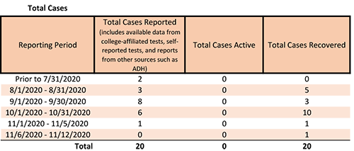 20201113-2 Total Cases.png